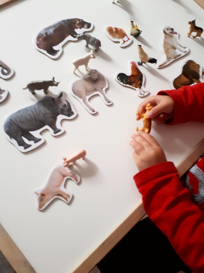 Juegos animales Montessori